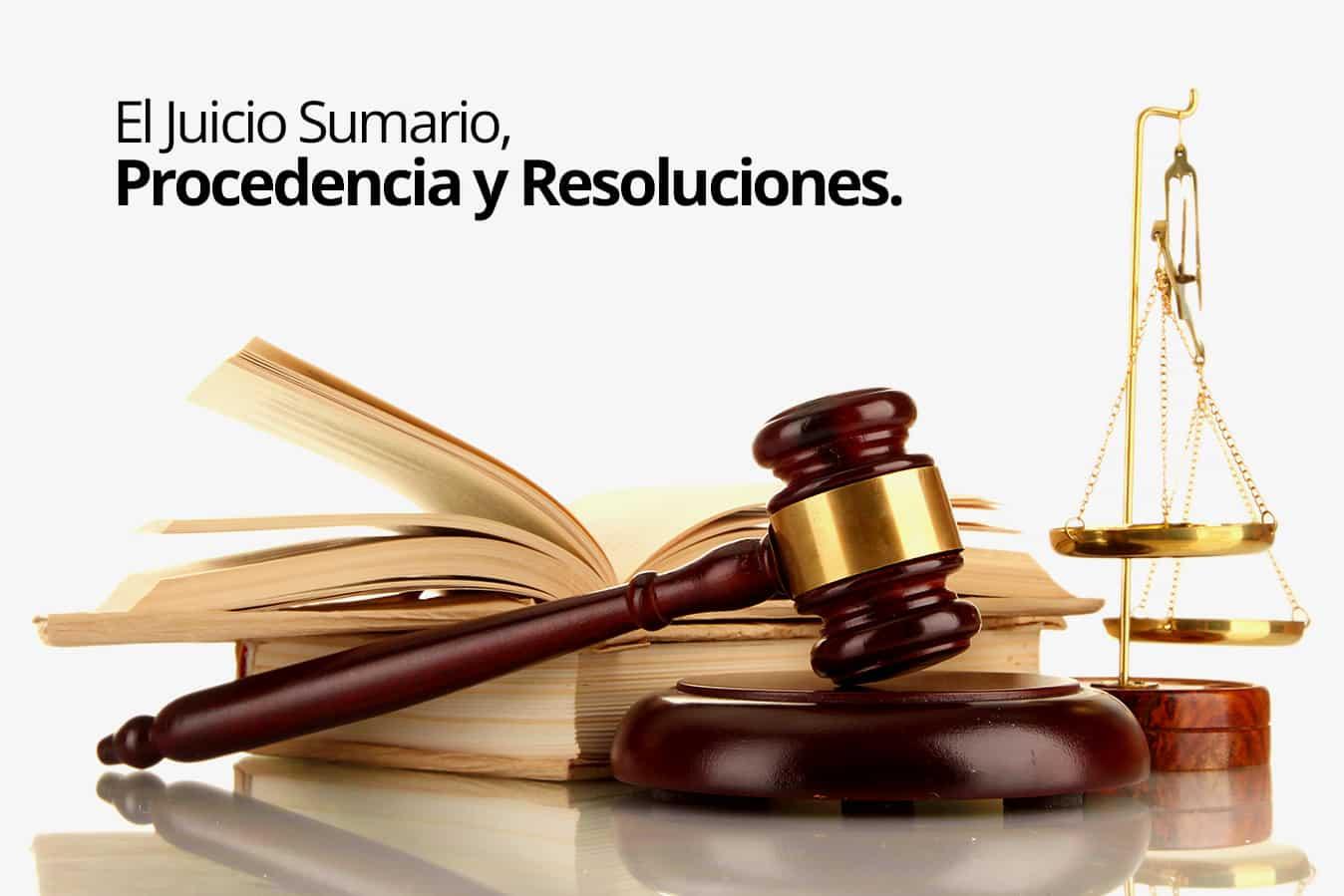 El procedimiento del juicio sumario se justifica con la existencia de un criterio definido y obligatorio para el tribunal que resuelva la controversia